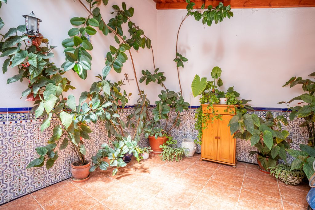 Casa Rural La Picacha